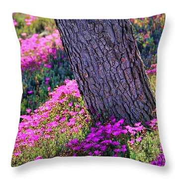 Spring Meadow Throw Pillow by Mariola Bitner