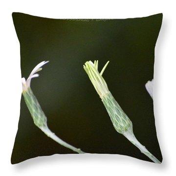 Spring Phase Throw Pillow by Sonali Gangane