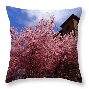 Spring Throw Pillow by Robert Nickologianis