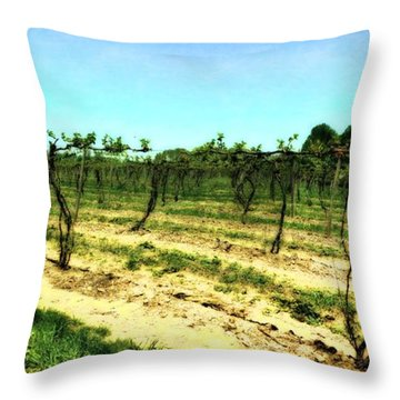 Spring Vineyard Ll Throw Pillow by Michelle Calkins