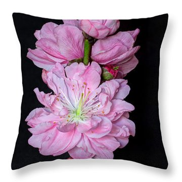Spring's Arrival  Throw Pillow by Heidi Smith