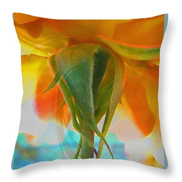 Spring In Summer Throw Pillow by Brooks Garten Hauschild