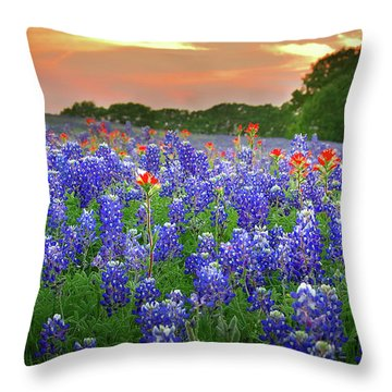 Springtime Sunset In Texas - Texas Bluebonnet Wildflowers Landscape Flowers Paintbrush Throw Pillow by Jon Holiday