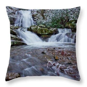 Spruce Flats Falls II Throw Pillow by Douglas Stucky