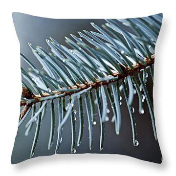 Spruce Needles With Water Drops Throw Pillow by Elena Elisseeva