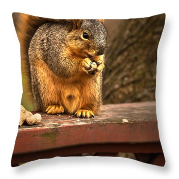 Squirrel Eating A Peanut Throw Pillow by  Onyonet  Photo Studios