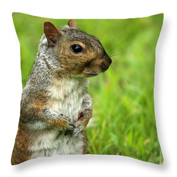 Squirrel Pose Throw Pillow by Karol Livote