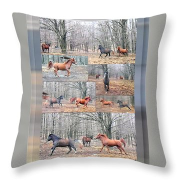 Stallions Enjoy Some Horsing Around Throw Pillow by Patricia Keller