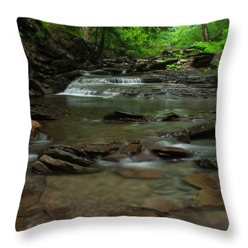 Standing In The Stream Throw Pillow by Steve Clough