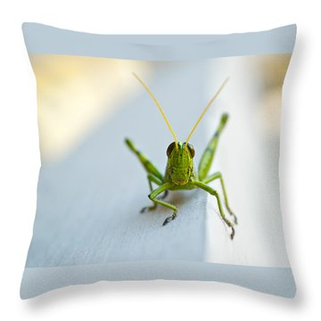 Staring At Me Throw Pillow by Shelby  Young