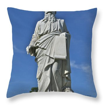 Statue 01 Throw Pillow by Thomas Woolworth