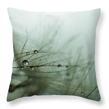 Stillness Throw Pillow by Eiwy Ahlund