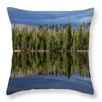 Storm Reflections Throw Pillow by Larry Ricker