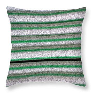 Straw Green Throw Pillow by Carol Lynch