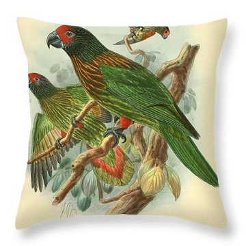 Streaked Lory Throw Pillow by J G Keulemans