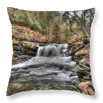 Stream Near Thurmond Wv Throw Pillow by Dan Friend