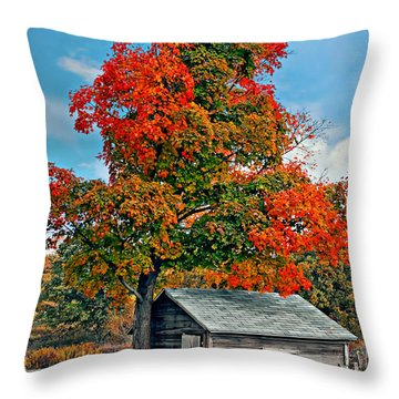 Sugar Shack Throw Pillow by Steve Harrington