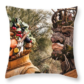 Summer And Winter Throw Pillow by Diane Wood