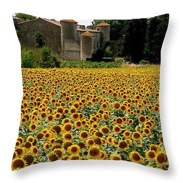 Summer Bliss Throw Pillow by France  Art