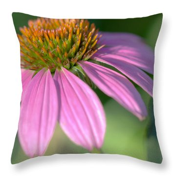 Summer Days End Throw Pillow by Heidi Smith