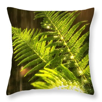 Summer Rain Throw Pillow by Jane Rix
