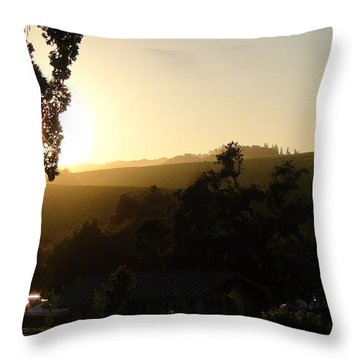 Sun Down Throw Pillow by Shawn Marlow