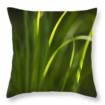 Sun-kissed Grass Throw Pillow by Christina Rollo
