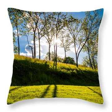 Sun Shining Through Trees And Shadows On The Grass At Antietam National Battlefield Maryland Throw Pillow by Jon Bilous