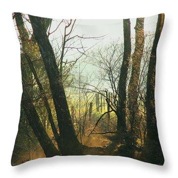 Sun Splash Throw Pillow by Douglas Stucky