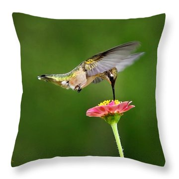 Sun Sweet Throw Pillow by Christina Rollo