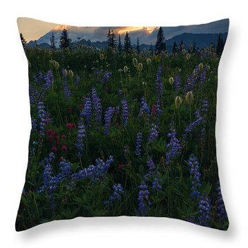 Sunbeams Over Rainier Throw Pillow by Mike  Dawson