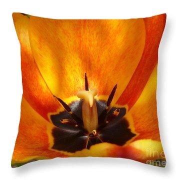 Sunburst Orange  Peach Blossom Throw Pillow by Lingfai Leung
