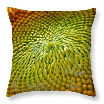 Sunflower  Throw Pillow by Christina Rollo