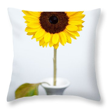 Sunflower Throw Pillow by Dave Bowman