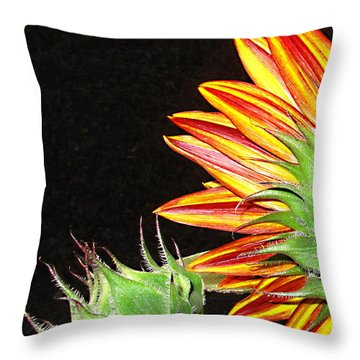Sunflower In The Making Throw Pillow by Joyce Dickens