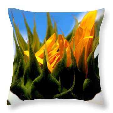 Sunflower Teardrop Throw Pillow by Karen Wiles