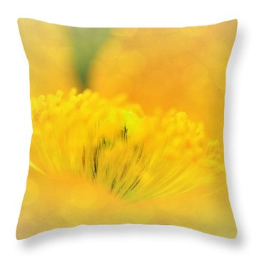 Sunlight On Poppy Abstract Throw Pillow by Kaye Menner