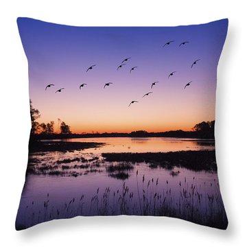 Sunrise At Assateague - Wetlands - Silhouette  Throw Pillow by Shara Lee