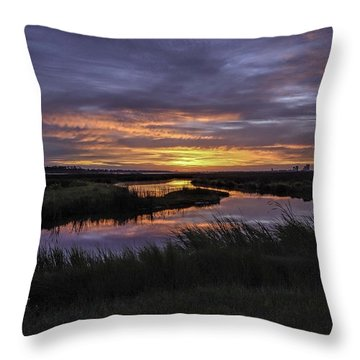 Sunrise On Lake Shelby Throw Pillow by Michael Thomas
