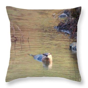 Sunrise Otter Throw Pillow by Mike Dawson