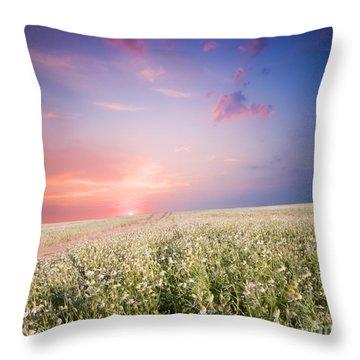 Sunrise Over Flower Land Throw Pillow by Michal Bednarek