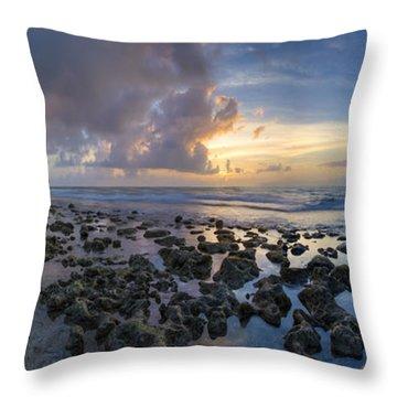 Sunrise Panorama Throw Pillow by Debra and Dave Vanderlaan