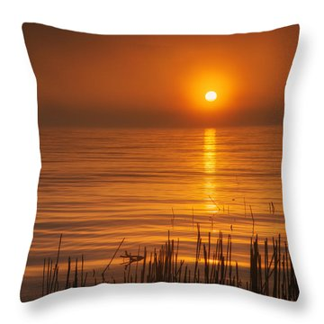 Sunrise Through The Fog Throw Pillow by Scott Norris