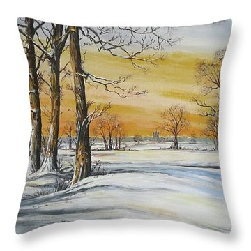 Sunset And Snow Sold Throw Pillow by Andrew Read