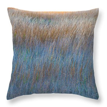 Sunset Marsh In Blue And Gold Throw Pillow by Jo Ann Tomaselli