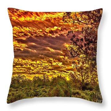 Sunset Navajo Tribal Park Canyon De Chelly Throw Pillow by Bob and Nadine Johnston