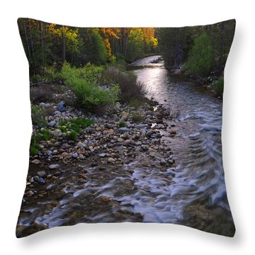 Sunset On The Merced Throw Pillow by Lynn Bauer
