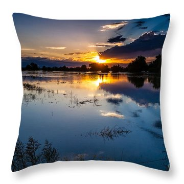 Sunset Reflections Throw Pillow by Steven Reed