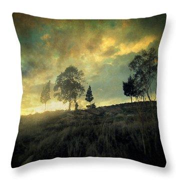 Sunset Trip II Throw Pillow by Taylan Apukovska
