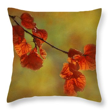 Sunshine And Red  Throw Pillow by Ivelina G